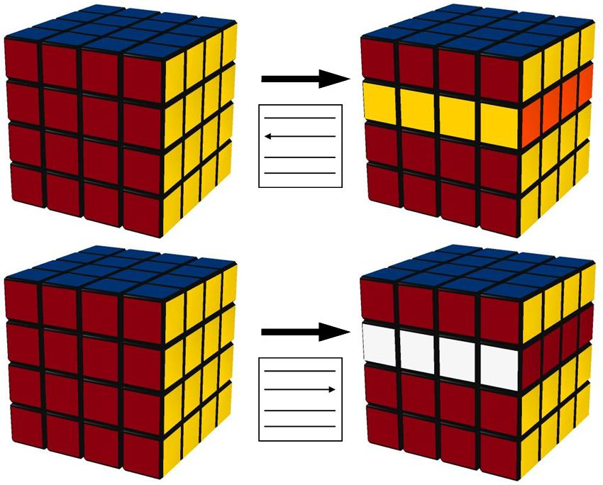 move_1-2 move_3-4